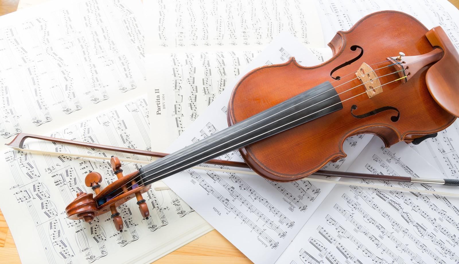 ヴァイオリンにかかるコスト【これから始める人向け】