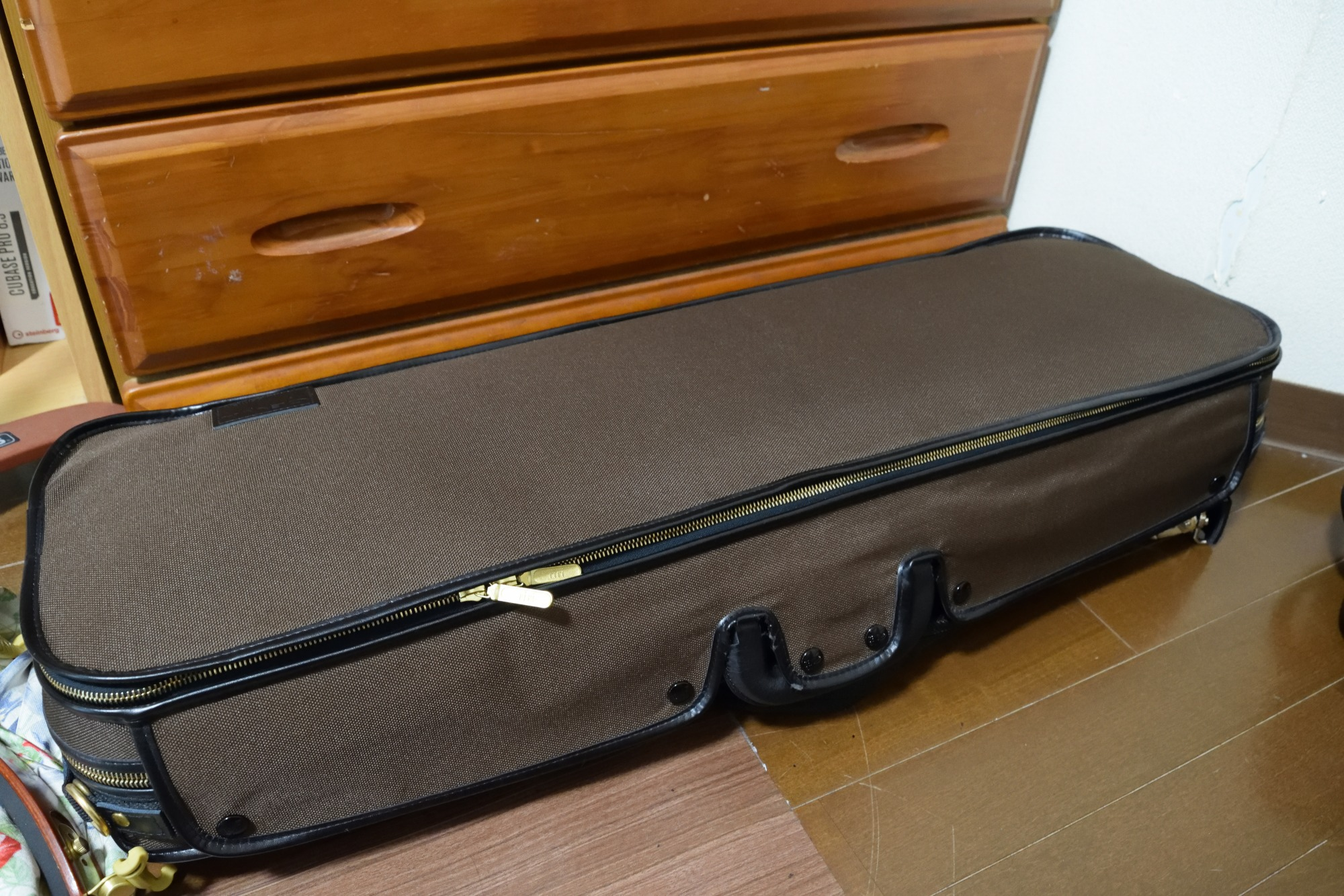 新しいヴァイオリンケースを買いました!GEWA Original Jaeger