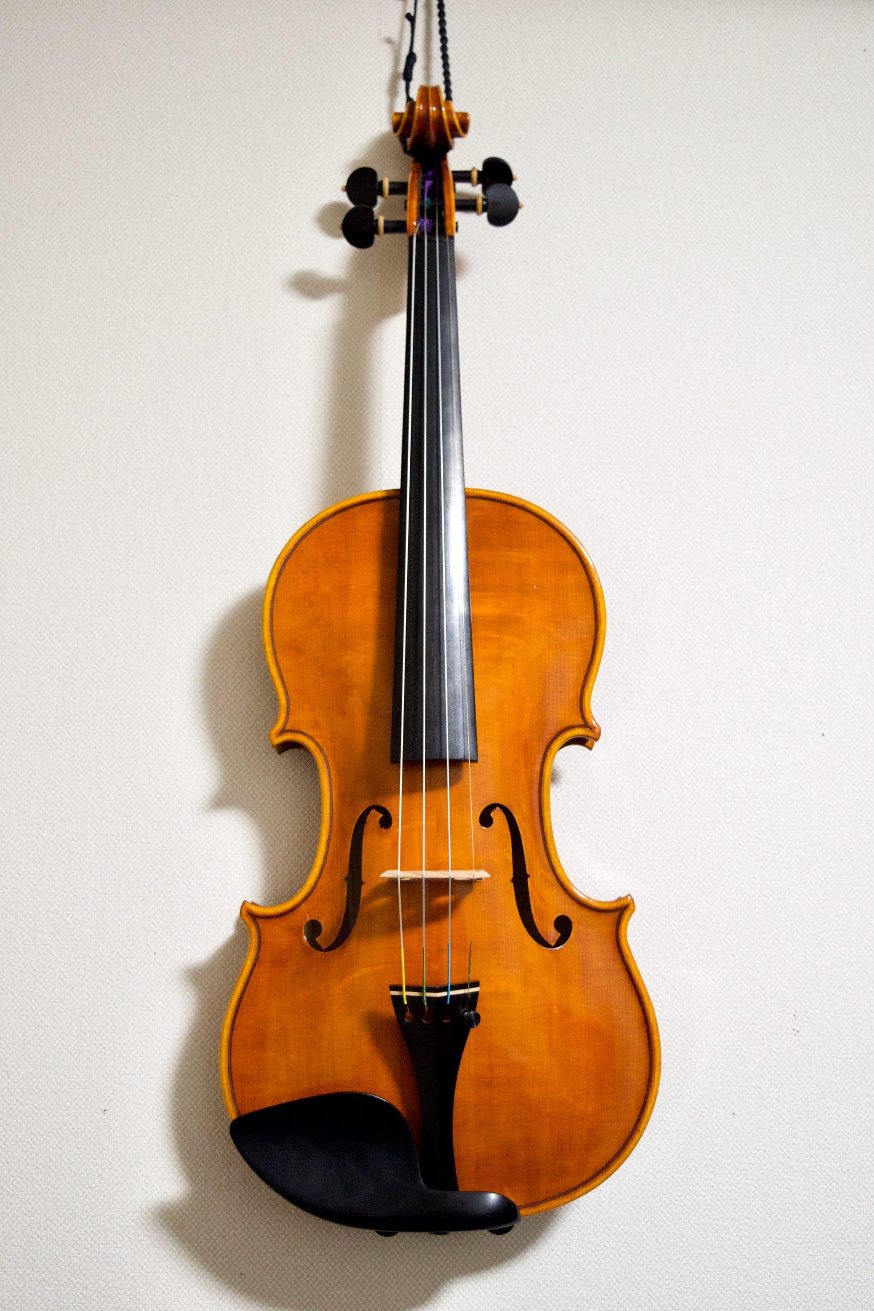 Raffaello Di Biagio 2015 Violin